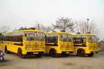 pbc_school_bus_tornedo_series_14